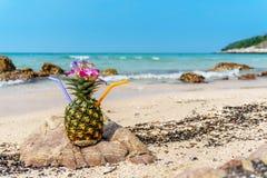 tropisk coctailananas Arkivbilder