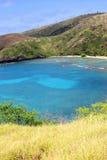 tropisk cove Arkivbilder