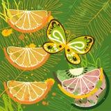 Tropisk dagbakgrund med färgstänk Arkivfoton
