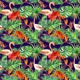 Tropisk design: exotiska sidor, flamingo, orkidéblommor seamless modell vattenfärg arkivfoton