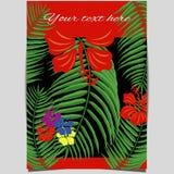 Tropisk designräkning Arkivfoto