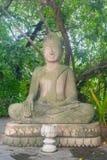 Tropisk djungel för Buddhasten- och marmorstaty i Cambodja Batta arkivbild