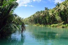 tropisk djungelflod Royaltyfri Fotografi