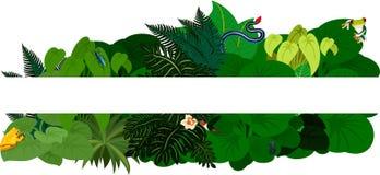 Tropisk djungellövverk Bakgrund för blom- design - vektorillustration stock illustrationer