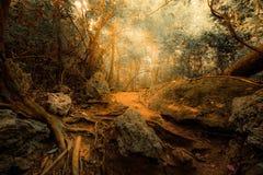 Tropisk djungelskog för fantasi i overkliga färger Begreppslandsc Arkivbilder