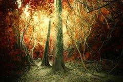 Tropisk djungelskog för fantasi i overkliga färger Begreppslandsc Arkivbild