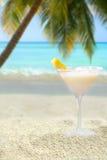 tropisk drink Arkivbilder
