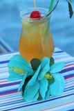 Tropisk drink med frukt och blåtthavbakgrund arkivbilder