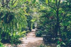Tropisk engelsk trädgårdstil för hemmiljögarnering arkivfoto