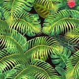 Tropisk exotisk sömlös modell royaltyfri illustrationer