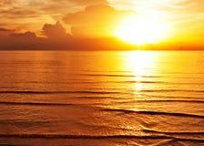 Tropisk färgrik solnedgång. arkivbild