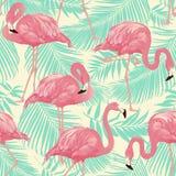 Tropisk fågelflamingobakgrund Arkivbild