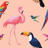 Tropisk fågelmodell seamless texturvektor stock illustrationer