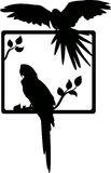 Tropisk fågelsilhouette Royaltyfri Illustrationer
