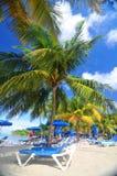 tropisk ferie Arkivbild