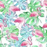 Tropisk flamingo pattern2 för vattenfärg royaltyfri illustrationer