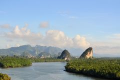 Tropisk flod och mangrove i Krabi, Thailand Royaltyfri Fotografi