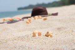 tropisk flykt Fotografering för Bildbyråer