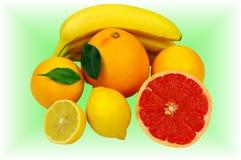 Tropisk frukt. Arkivbild