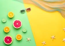 Tropisk frukt för modesommar Minsta Art Concept Arkivfoto