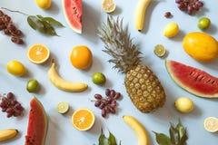 tropisk frukt royaltyfria bilder