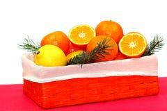 Tropisk fruktbakgrund Royaltyfri Bild