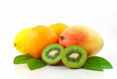 Tropisk fruktgrupp som isoleras på vitbakgrund Arkivfoton