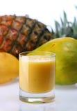 tropisk fruktsaft Arkivbild