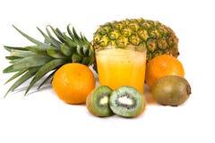tropisk fruktsaft Fotografering för Bildbyråer