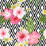 Tropisk geometrisk bakgrund för blommor och för sidor stock illustrationer