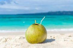 Tropisk grön kokosnöt med sugrör på den vita exotiska sandiga stranden Arkivbilder