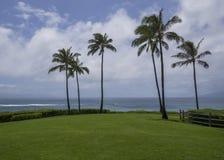 Tropisk havsemesterort med avbrottsvågor arkivfoton
