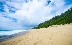 Tropisk havsikt med vegetation i den Mocambique kustlinjen Royaltyfria Bilder