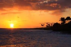 tropisk hawaiansk solnedgång Royaltyfri Foto