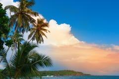 Tropisk ö i Indiska oceanen Arkivbild
