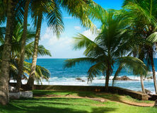 Tropisk ö i Indiska oceanen Arkivfoton