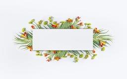 Tropisk idérik design för sommar med palmblad och exotiska blommor för baner eller reklamblad på vit arkivbilder