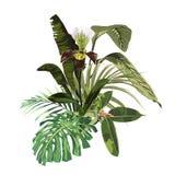 Tropisk inbjudandesignbeståndsdel med orkidéblommor och exotiska palmblad vektor illustrationer