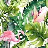 Tropisk isolerad sömlös modell med flamingo Vattenfärgvändkretsteckning, rosa fågel och grönskapalmträd, vändkrets vektor illustrationer