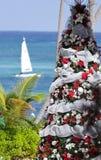 tropisk jul Arkivfoto