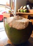 Tropisk kokosnötdrink med två sugrör royaltyfria foton