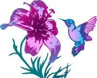 Tropisk kolibri och blommor Fotografering för Bildbyråer