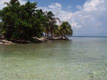 tropisk kust Royaltyfri Fotografi