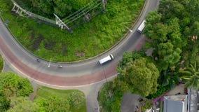 Tropisk kust- väg stock video