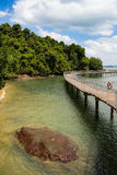 Tropisk kustlinjestrandpromenad Arkivfoto