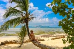 tropisk kvinna för strandpalmträd Arkivbilder