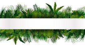 tropisk lövverk din blom- illustration för bakgrundsdesign Royaltyfri Bild