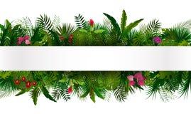 tropisk lövverk din blom- illustration för bakgrundsdesign Arkivbilder