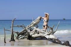 Tropisk lady Royaltyfri Fotografi