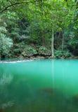 tropisk lagun arkivfoton